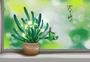 春天植物图片