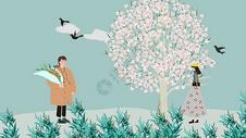 桃花朵朵开图片