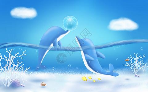 海底的海豚图片
