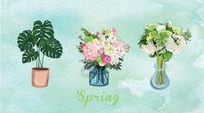 手绘植物盆栽背景图片