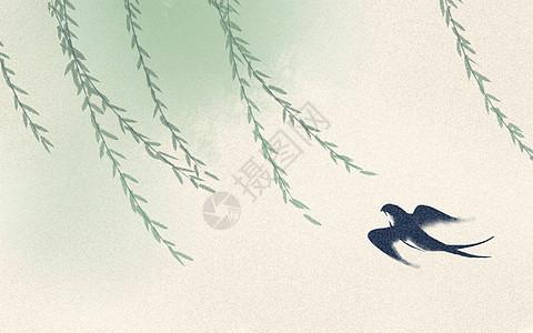 柳条春天燕子图片