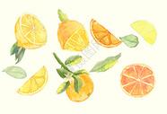 水彩水果元素图片