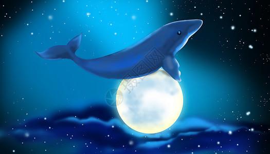 鲸鱼与月亮图片