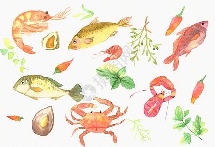 手绘水彩鱼类元素背景图片