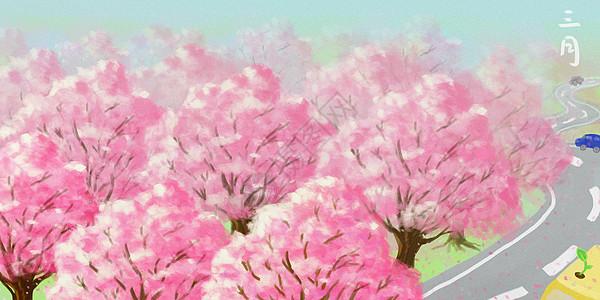 赏樱花图片