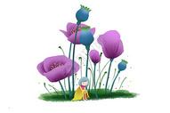 虞美人植物素材图片