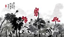 中国风荷花水墨画图片
