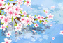春天樱花插画图片