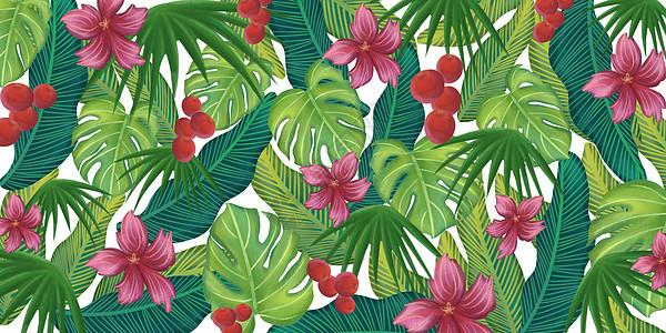 热带植物元素图案图片