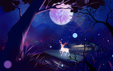 森林中的梅花鹿图片