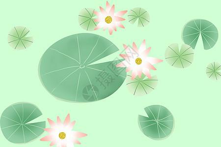 荷塘中的风景节气插画图片