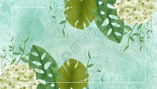 水彩叶子植物背景图片