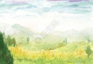 水彩油菜花背景图片