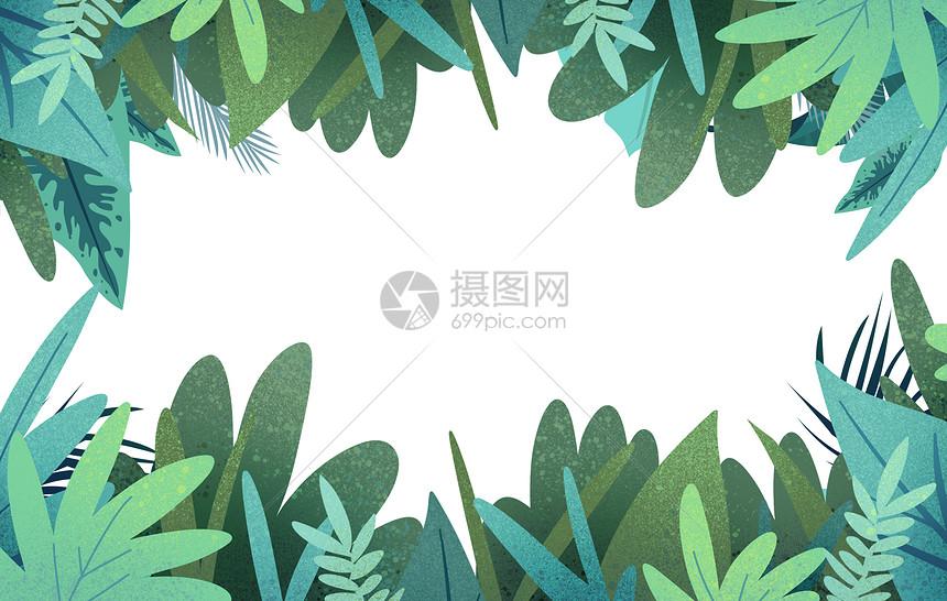 水彩热带植物图片