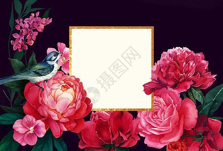花卉贺卡背景图片