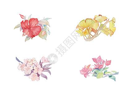 花卉元素素材图片