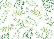 小清新平铺叶子图片