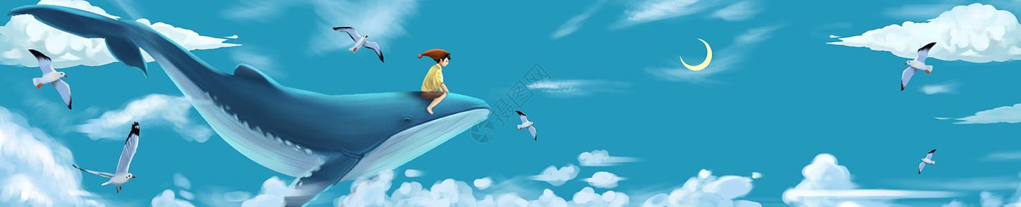 鲸鱼少年与海鸥图片