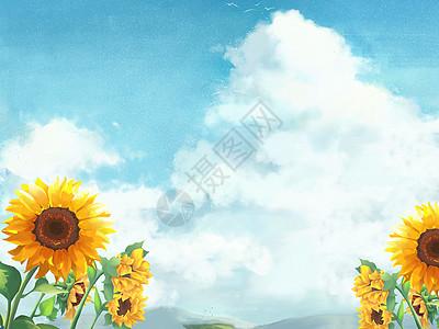 云海下的牵牛花图片
