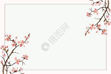 小清新樱花背景图片