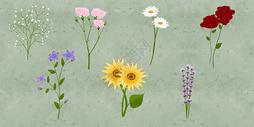 手绘鲜花素材图片