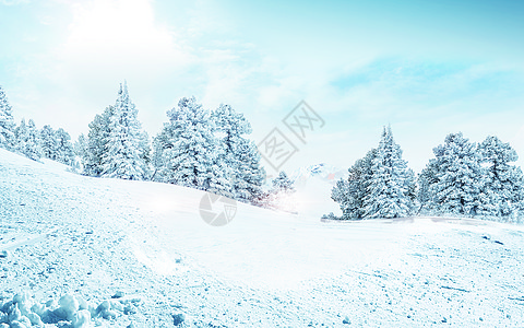 美丽的雪景图片