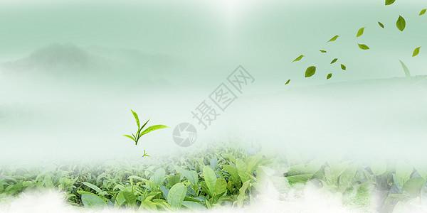 绿色云雾背景图片