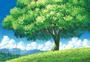 唯美植物风景图片