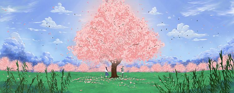 樱花之恋图片