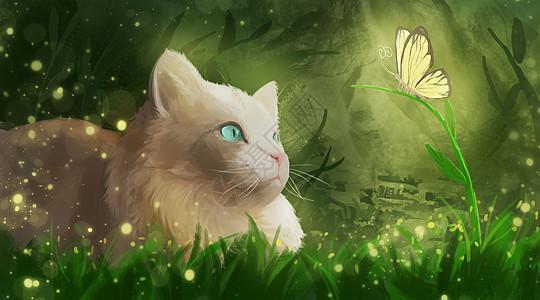 草丛中的猫咪和蝴蝶图片