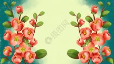 唯美植物花卉背景图片