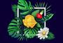 花卉植被背景图片
