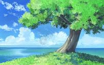 清新植物风景图片