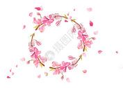 樱花花环图片