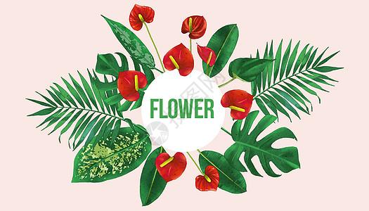 绿叶红花图片