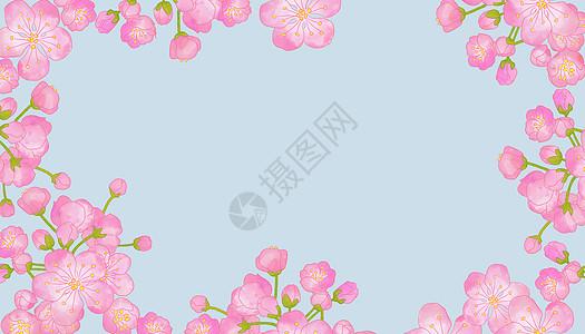水彩桃花图片
