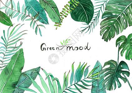 水彩手绘北欧绿植高清图片
