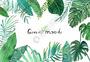 水彩手绘北欧绿植图片