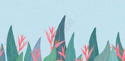 简约花卉背景素材图片