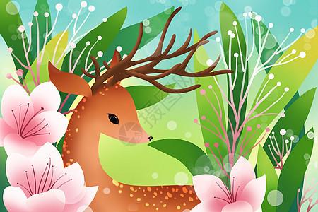 花朵里的梅花鹿图片