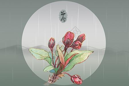 谷雨时节图片