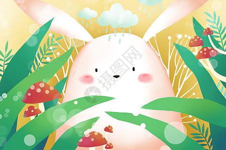 春天兔子可爱壁纸图片