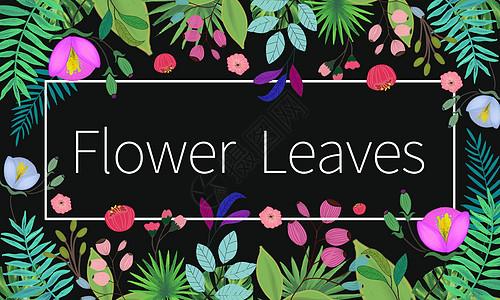 手绘叶子花卉背景图片