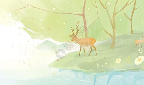森林中的麋鹿图片
