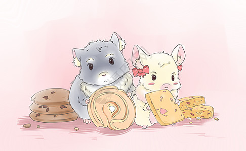 龙猫曲奇饼图片