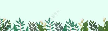 手绘植物元素背景图片