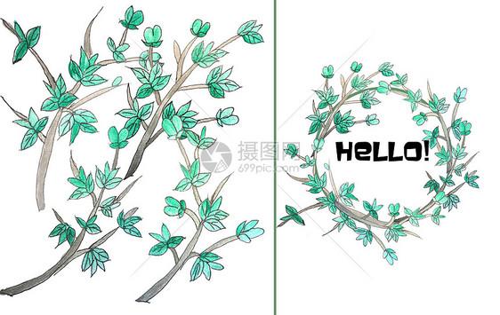 手绘水彩山楂芽