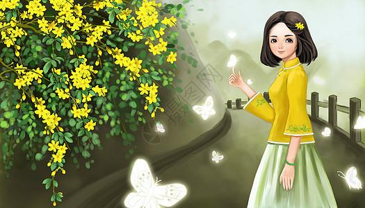赏迎春花图片