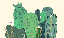 仙人球植物清新插画图片