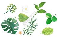 手绘热带叶子背景图片